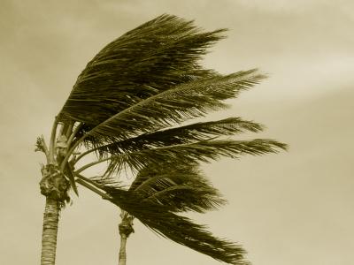 Hurricane Season Begin